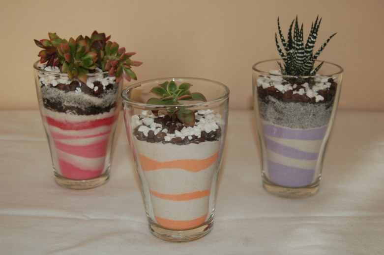 Vasi di sabbia mini con piante grasse le foto unici - Vasi con piante grasse ...